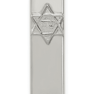 Sterling Silver 925 Mezuzah With Star of David And Hamsa, Hand of God Pendant