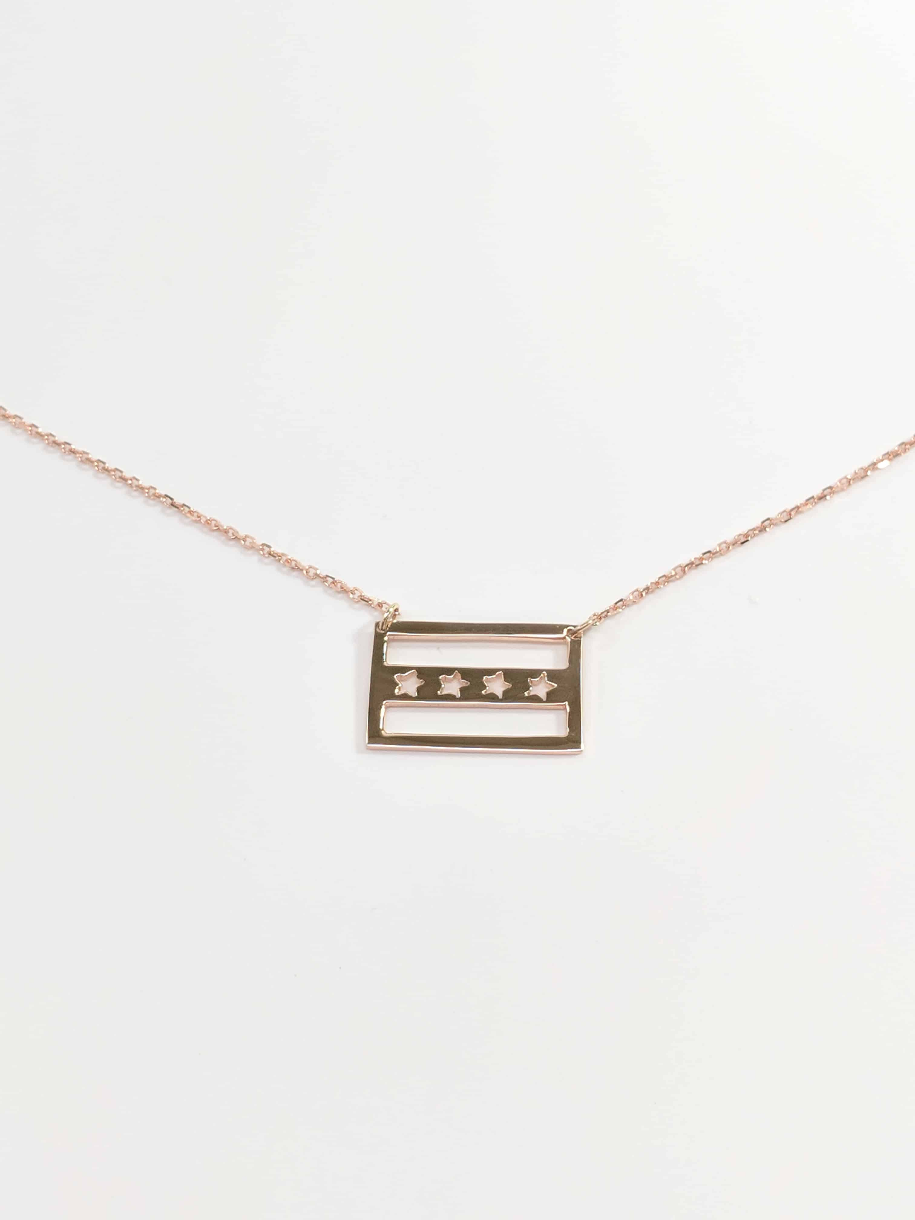 14KT Rose gold City of Chicago Flag pendant Necklace, White and yellow gold, My city necklace,